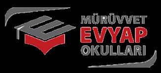 İstanbul Mürüvet Evyap Okulları